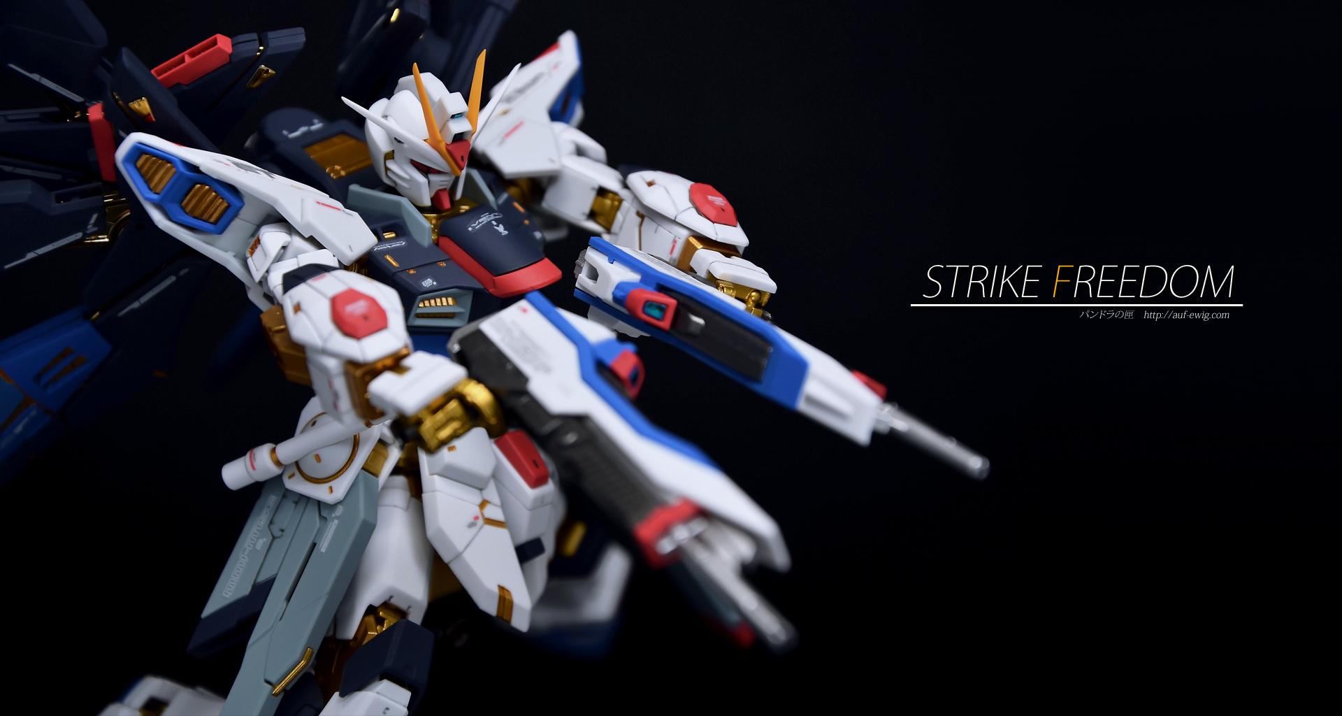 RG 1/144 ZGMF-X20A ストライクフリーダム